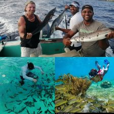 Roatan Reef Tours